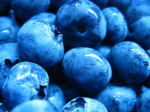 blueberries-1323372-1600x1200