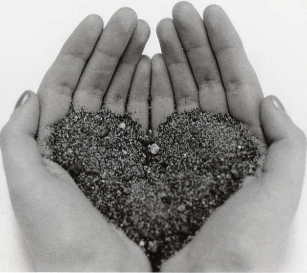 heart-in-my-hands